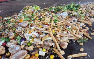 Legge Gadda sugli sprechi alimentari: due anni dopo.